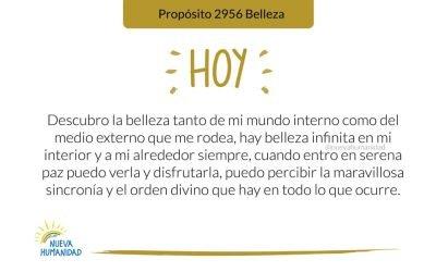 Propósito 2956 Belleza