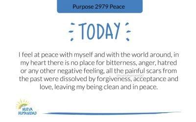 Purpose 2979 Peace