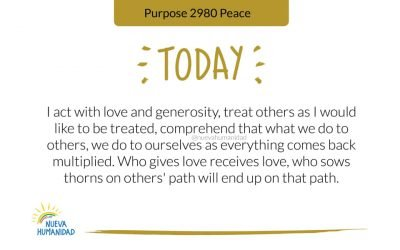 Purpose 2980 Peace