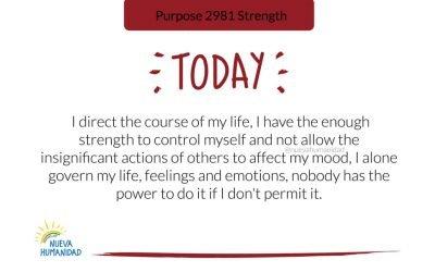 Purpose 2981 Strength