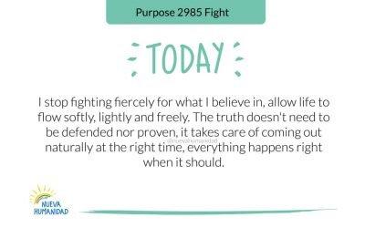 Purpose 2985 Fight