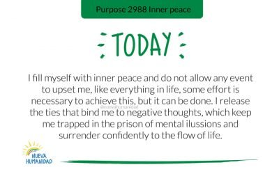 Purpose 2988 Inner peace