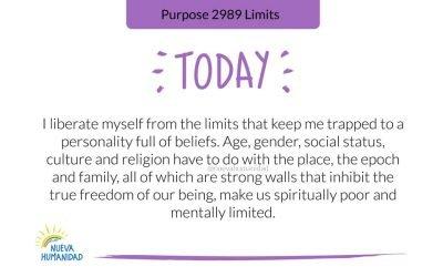 Purpose 2989 Limits