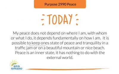 Purpose 2990 Peace