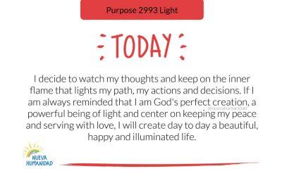 Purpose 2993 Light