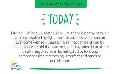 Purpose 2994 Equilibrium