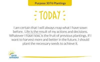 Purpose 3076 Plantings