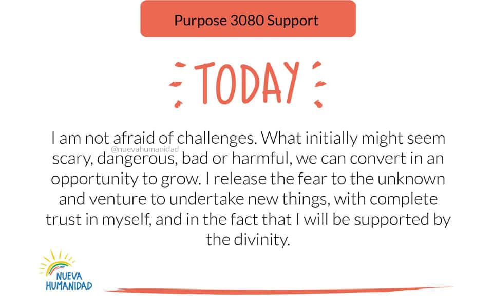 Purpose 3080 Support