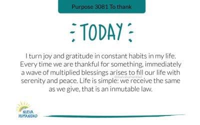 Purpose 3081 To thank