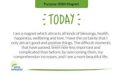 Purpose 3084 Magnet
