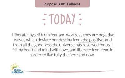 Purpose 3085 Fullness